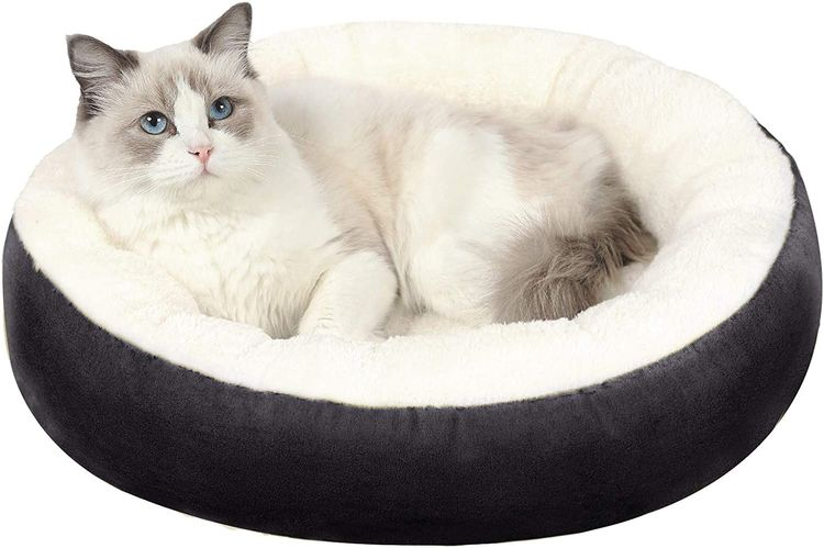 """EDUJIN Warming Donut Cushion Cat Bed & Dog Bed, Calming Pup Dog Cat Bed for Small Medium Pet, Non-Slip Bottom, Machine Washable Round Warm Bed for Dogs with Fluffy Comfy Lining Plush Kennel(20"""",24"""")"""
