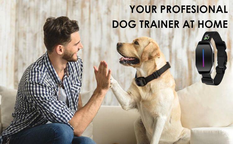 anti barking device shock collar for barking dog bark shock collar