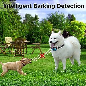 dog barking collar